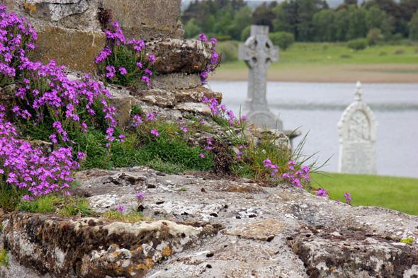 Hochkreuz-Romantik in den Ruinen von Clonmacnoise. (Foto Karsten-Thilo Raab)