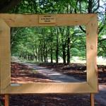 Hirsche, Heide und Kunstgenuss – unterwegs im De Hoge Veluwe Nationalpark