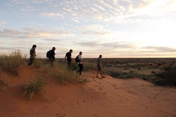 Das wandern lässt sich - wie hier im Kgalagadi Transfrontier Park - auch mit einer Fußsafari kombinieren. (Foto South Africa Tourism)