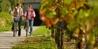 Genussvolles Radfahren auf dem Ahr-Radweg