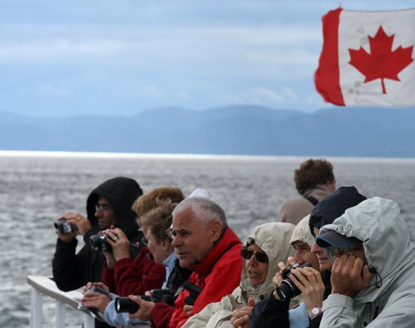 Geduld und Ausdauer sind bei den Whale Watching Touren gefordert. (Foto Karsten-Thilo Raab)