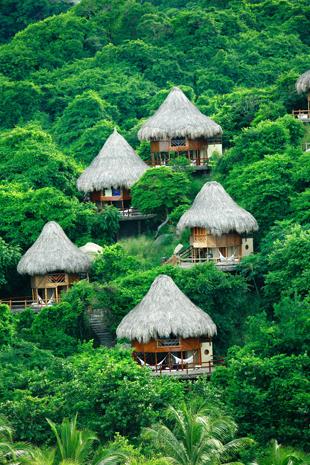 Ein Stück-Traum-Dschungel: der Tayrona Nationalpark,