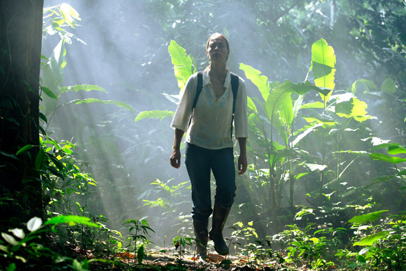 Ein unvergessliches Erlebnis: eine Tour durch den Regenwald Kolumbiens.