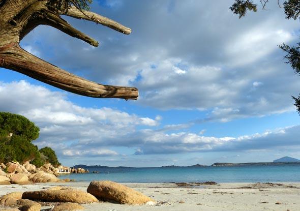 Verträumte Buchten und einsame Strände sind auf Sardinien keine Seltenheit. (Foto Daniel Stricker(Pixelio)