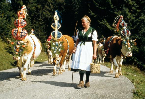 Tierischer Spaß für große und kleine Besucher: der traditionelle Almtrieb.