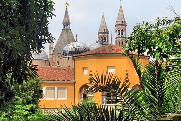 "Blick vom Botanischen Garten in Padua zur Wallfahrtskirche ""Basilica di Sant'Antonio"". (Foto Bildpixel/Pixelio)"