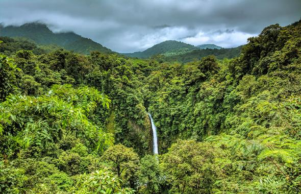Dicht bewachsen und artenreich: der Regenwald in Costa Rica. (Foto Martin Gebhardt/Pixelio)