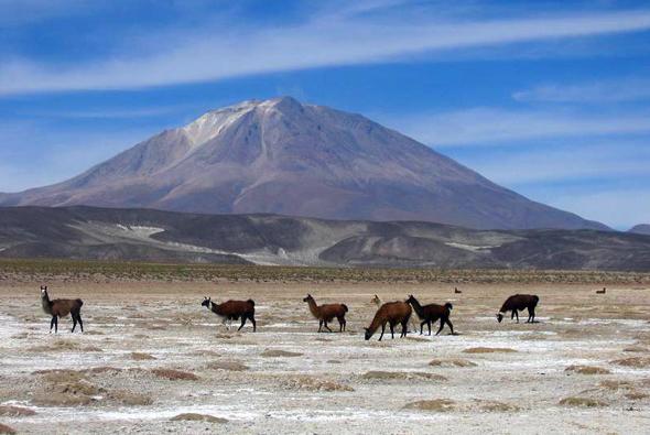 Ein besonderes Naturphänomen in Bolivien: die Salar de Uyuni, die größte Salzpfanne der Welt. (Foto Anouchka Unel)