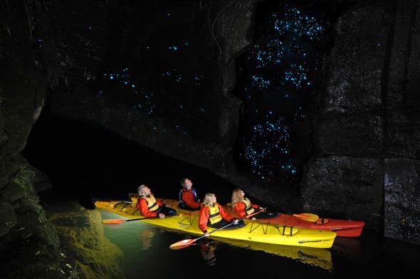 Unvergesslich und faszinierend: eine Glühwürmchen-Tour mit dem Kanu.