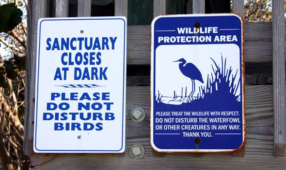 Das Seabird Sanctury steht Besucher täglich bei freiem Eintritt offen. Allerdings werden Spenden gerne gesehen. (Foto Karsten-Thilo Raab)