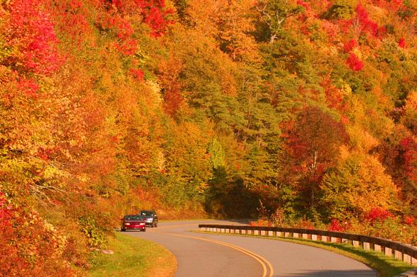 Selbst Autofahrtenw erden zu einem Kaleidoskop der bunten Farben. (Fotos Visit NC)