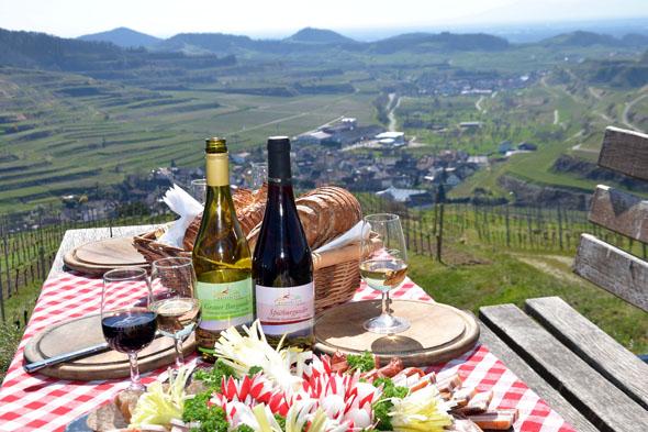 Im WeinFrühling bietet der Naturgarten Kaiserstuhl seinen Gästen eine Reihe aktiv-genussreicher Veranstaltungen.