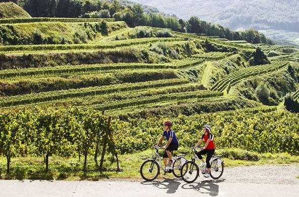 Für genussvolle Radtouren im Naturgarten Kaiserstuhl gibt es sowohl flache Routen, als auch anspruchsvolle Rundtouren, die man auch per E-Bike erkunden kann.