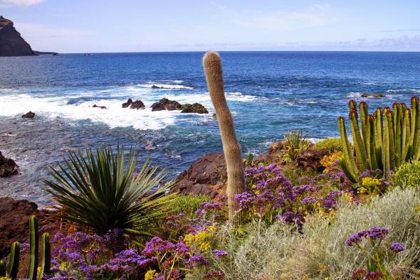 Typische Landschaft auf Teneriffa. (Foto Udo Kasper/Pixelio)