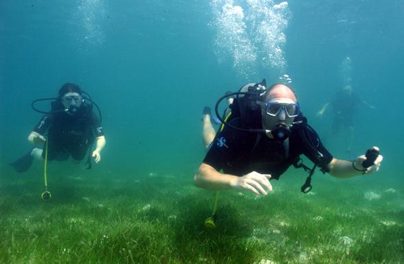 Als Biosphärenreservat der UNESCO weiß das Baa Atoll vor allem Taucher in seinen Bann zu ziehen.