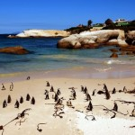 Große Erlebnisse zu kleinen Preisen in Südafrika