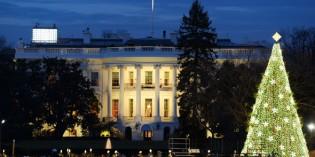 Charmant-schräge Holiday Season in Washington