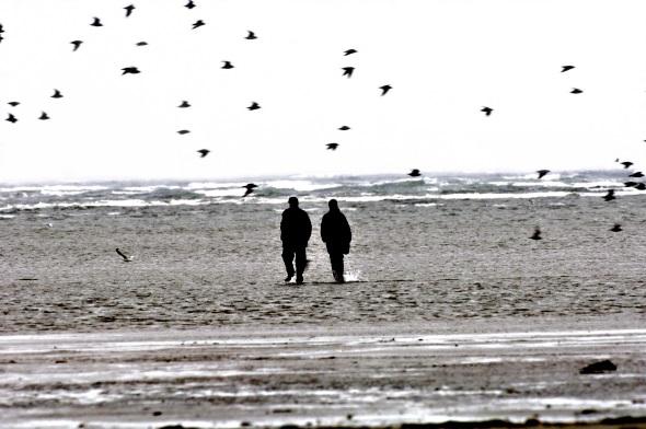 Das Wattenmeer übt seit eh und je eine große Faszination aus. (Foto Fanø Turistbureau)