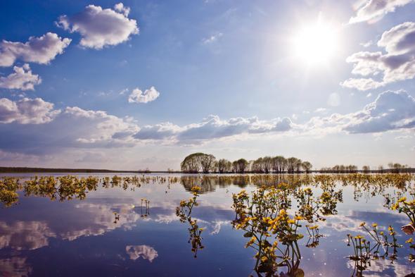 Auch landschaftlich weiß Estland durchaus zu begeistern. (Foto Visit Estonia)