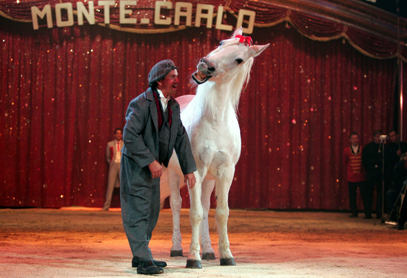 Auch bei der 40. Auflage garantiert zum Wiehern komisch: das Zirkus-Festival in Monte-Carlo.