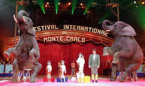 Zirkus vom allerfeinsten: das Festival in Monte-Carlo.