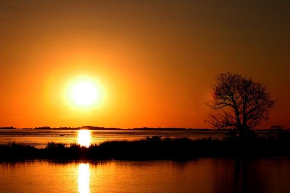 Sonnenuntergangs-Romantik im Amazonasbecken.