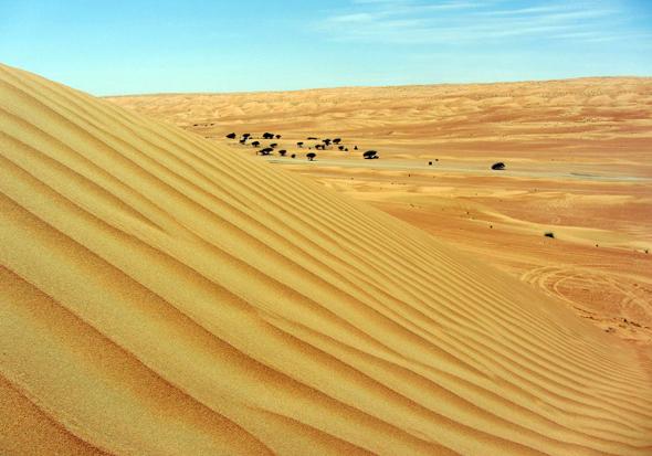 Die Wüste Wahiba lässt sich herrlich auf dem Rücken von Kamelen erkunden.