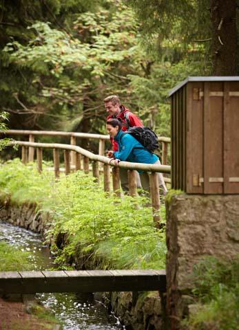 Auf Schusters Rappen lässt sich die Weite und Schönheit des Nationalparks am besten kennen lernen. (Foto Harzer Tourismusverband)