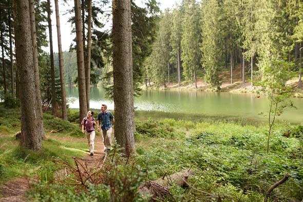 Der Nationalpark Harz ist im wahrsten Sinne des Wortes wudnerbar wanderbar. (Foto GOSLAR marketing gmbh)