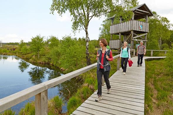 Zu Fuß die Natur entdecken: Das Weserbergland bietet dafür zahlreiche Möglichkeiten, etwa im Hochmoor Mecklenbruch. (Foto: djd)