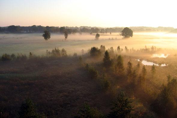 Selbst im Nebel überaus faszinierend: das Teufelsmoor nordöstlich von Bremen. (Foto: djd)