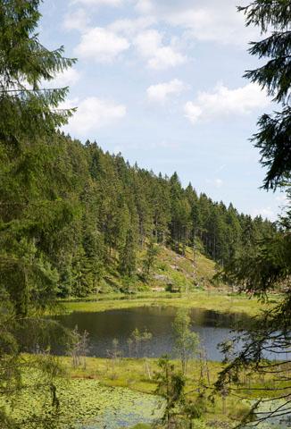Mystischer See im Nationalpark Schwarzwald: der Huzenbacher See. (Foto: djd)