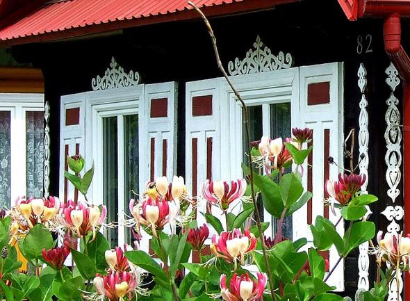 Im Land der offenen Fensterläden: Ostpolen weiß durch seine Häuser- und Blumenpracht zu gefallen. (Foto Katharina Büttel)