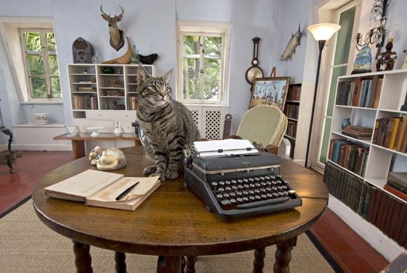 Nur echt mit sechszehiger Katze: der Schreibtisch von Hemingway in seinem Haus auf key West. (Foto Rob O'Neal)