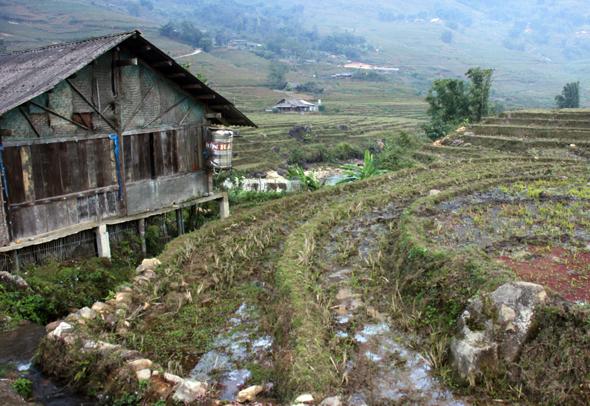 Direkt an den Reisterrassen liegen - wie hier bei Lao Chai - die zumeist einfachen Holzhäuser der Bergvölker. (Foto Karsten-Thilo Raab)