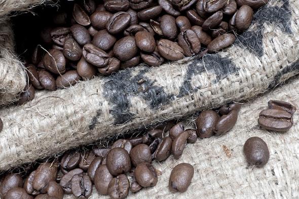 Kaffeeanbau ist für viele Staaten Zentralamerikas ein bedeutender Wirtschaftsfaktor.
