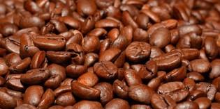 Zentralamerika: Wo der Kaffee wächst und gedeiht