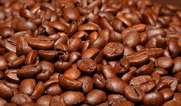 Erlesener Kaffe gehört zu den wichtigsten Exportgütern in Zentralamerika.