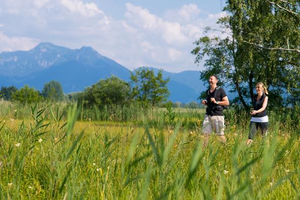 Rund um den Chiemsee finden Wanderer Wege für jeden Geschmack: durch artenreiche Moorlandschaften oder in alpinen Berglandschaften. (Foto: djd)