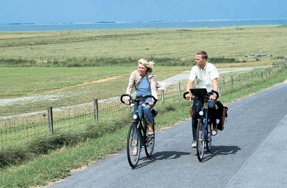 Vom Deich haben die Radler einen weiten Ausblick übers grüne Land. (Foto: djd)