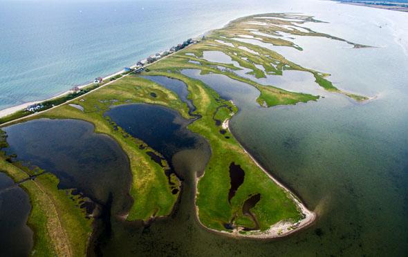 Von Heiligenhafen aus verspricht das Naturschutzgebiet Graswarder unvergessliche Einblicke in Flora und Fauna. (Foto: djd)