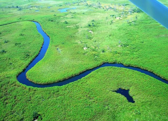 Einfach atemberaubend: der Blick aus einer Cessna Blick auf den Schlangenfluss im Okavango-Delta. (Foto Katharina Büttel)