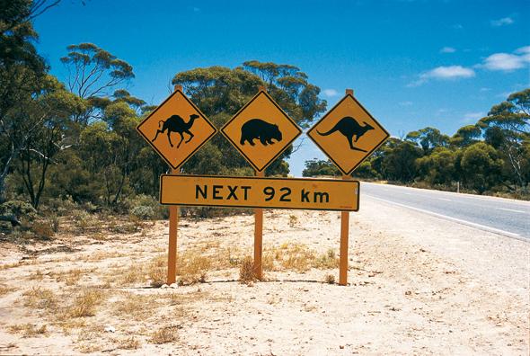 Ein Traum von einer Fernstraße: der Eyre Highway. (Foto Tourism Western Australia)