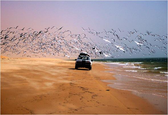 """Die Rallye """"Dust and Diesel"""" führt durch malerische Flecken Erde in Westafrika."""