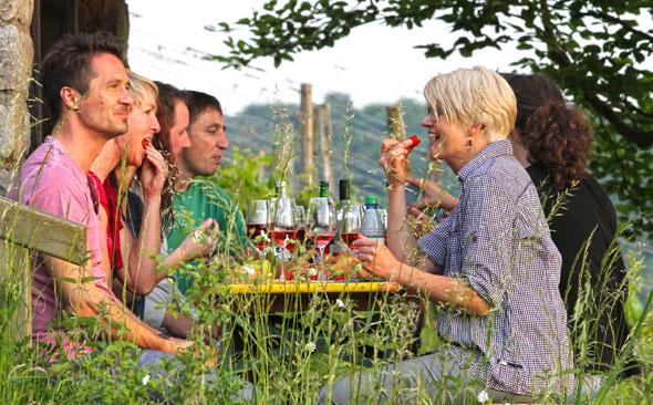 Als nördlichste Weinbauregion Frankens ist das Saalestück von zahlreichen Winzerbetrieben geprägt. (Foto: djd)