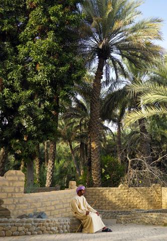 Nennt zahlreiche Welterbestätten ihr Eigen: die Wüstenstadt Al Ain.