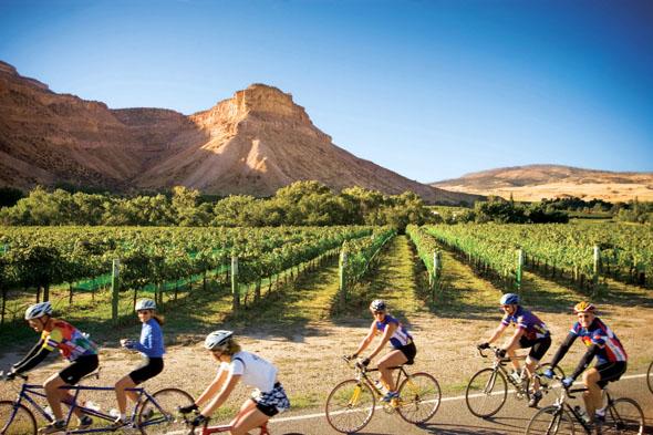 Mit dem Rad durch die Weinberge von Palisade in Colorados Wine Country. (Foto Denise Chambers)