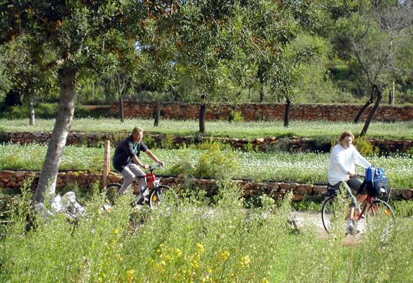 Auch mit dem Rad lässt sich dieser Teil von Ibiza entspannt erkunden. (Fotos KPRN)