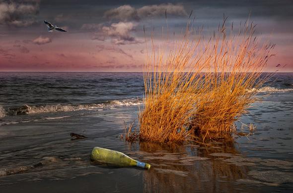 Selbst in der Abstimmung lässt sich an der Nordseeküste noch so manches wundersame Starndgut entdecken.