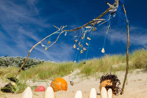 Ein maritimer Hingucker: Strandgut an der Nordsee (Foto Carlos Arias Enciso)